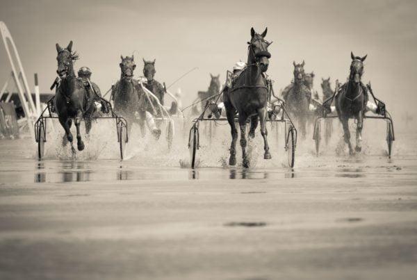 illustration d'une course de chevaux